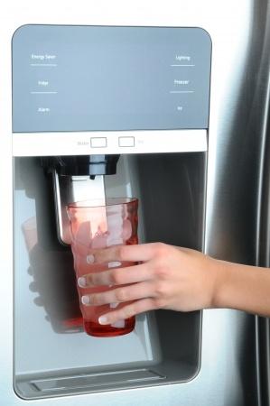 refrigetor dispensing ice